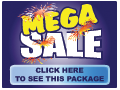 Mega Sale Sale in a Box Kit